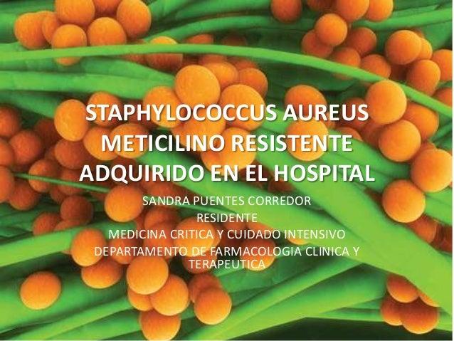 STAPHYLOCOCCUS AUREUS METICILINO RESISTENTE ADQUIRIDO EN EL HOSPITAL SANDRA PUENTES CORREDOR RESIDENTE MEDICINA CRITICA Y ...