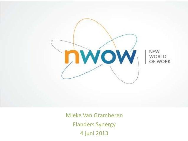 Mieke Van GramberenFlanders Synergy4 juni 2013