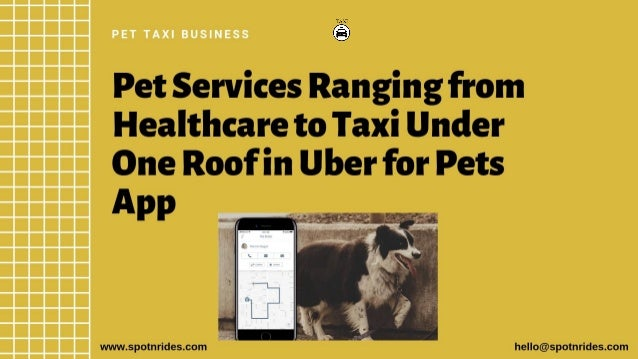 Start a pet taxi service business with spotnrides