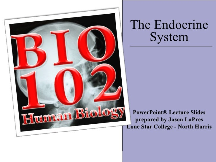 :) The Endocrine System PowerPoint® Lecture Slides prepared by Jason LaPres Lone Star College - North Harris