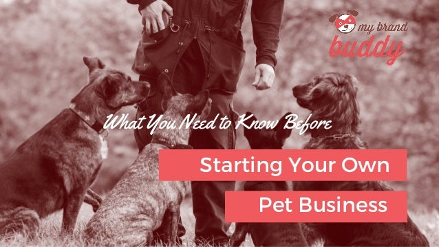 What You Need to Know Before Starting Your Own Pet Business