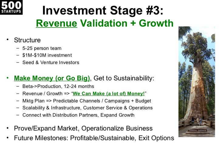 Investment Stage #3:            Revenue Validation + Growth• Structure   – 5-25 person team   – $1M-$10M investment   – Se...