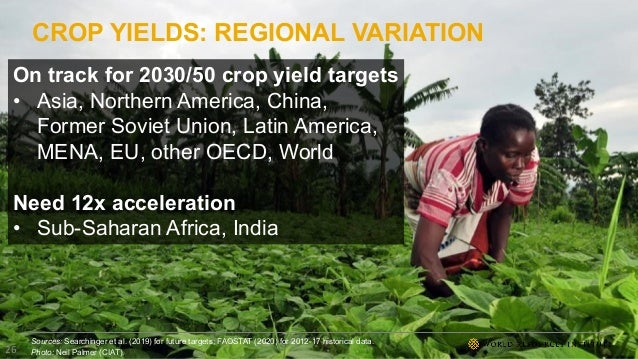 CROP YIELDS: REGIONAL VARIATION Sources: Searchinger et al. (2019) for future targets; FAOSTAT (2020) for 2012-17 historic...