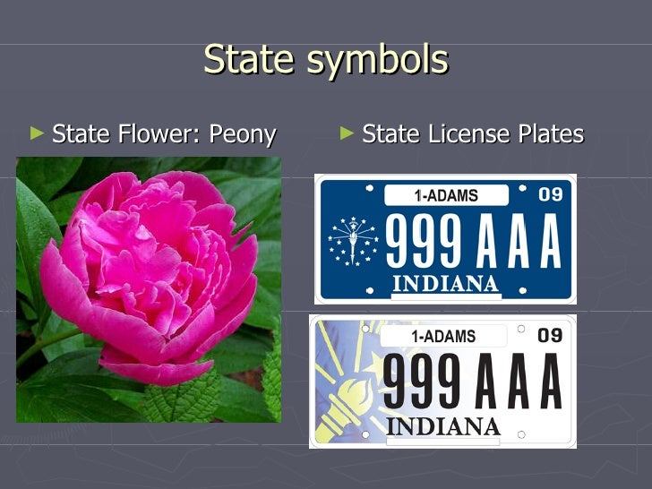 State Of Indiana1
