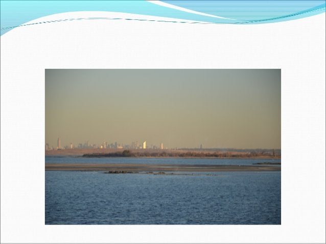 Water Quality Other Water Quality Projects Oyster projects--NYC DEP –presentation cleaning the water Naturally ?—John Mc...