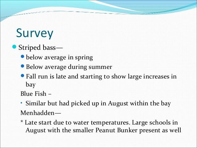 Ecowatcher's State of the bay -fall 2015
