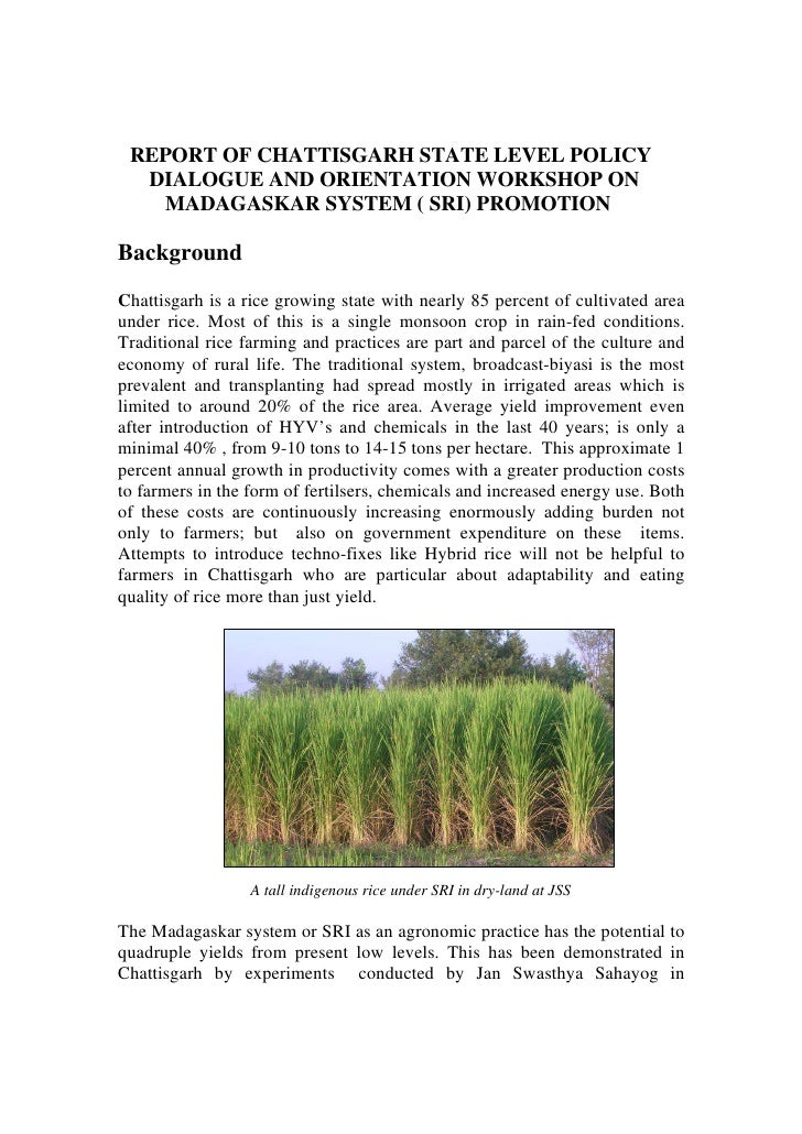 REPORT OF CHATTISGARH STATE LEVEL POLICY  DIALOGUE AND ORIENTATION WORKSHOP ON    MADAGASKAR SYSTEM ( SRI) PROMOTIONBackgr...