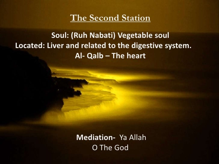 """An-Nafs al-Lawamma: The Reproachable NafsThe Second Station""""I swear by the day of Arising! And I swear by the reproachful ..."""