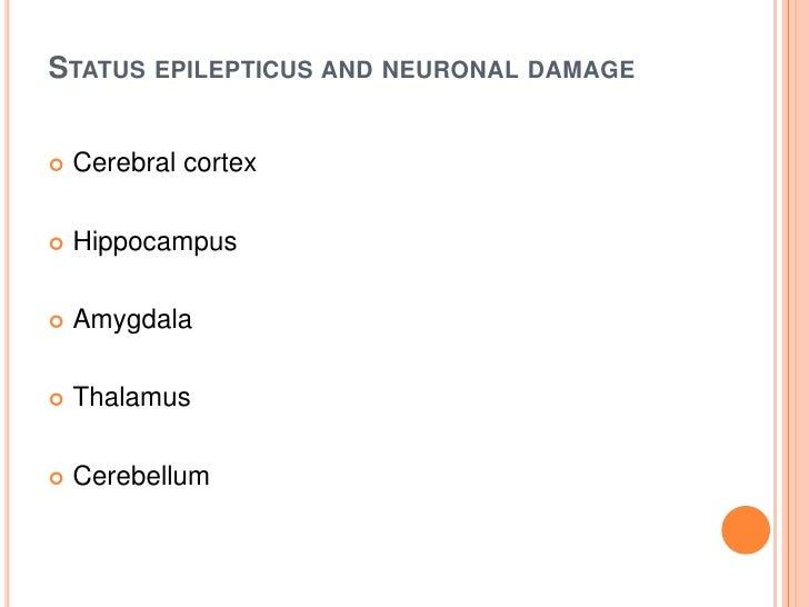 Status epilepticus and neuronal damage<br />Cerebral cortex <br />Hippocampus <br />Amygdala<br />Thalamus <br />Cerebellu...
