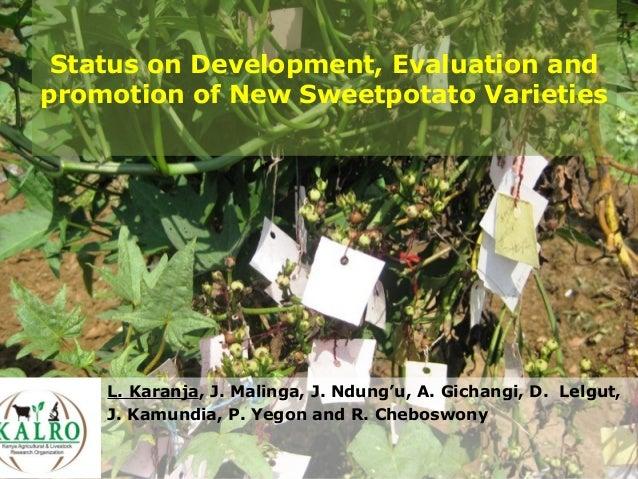 Status on Development, Evaluation and promotion of New Sweetpotato Varieties L. Karanja, J. Malinga, J. Ndung'u, A. Gichan...