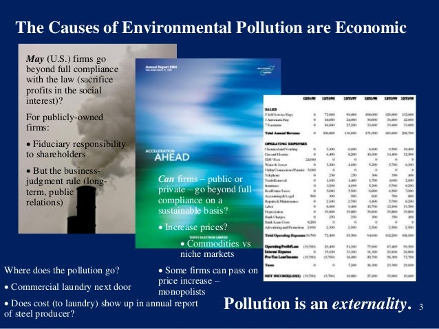 To what extent can a government be responsible for environmental protection