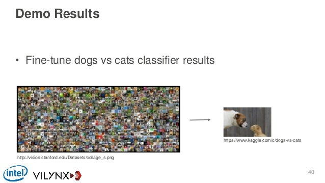 Demo Results • Fine-tune dogs vs cats classifier results http://vision.stanford.edu/Datasets/collage_s.png https://www.kag...