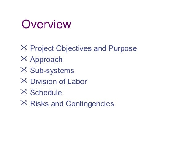 Overview  Project Objectives and Purpose  Approach  Sub-systems  Division of Labor  Schedule  Risks and Contingencies