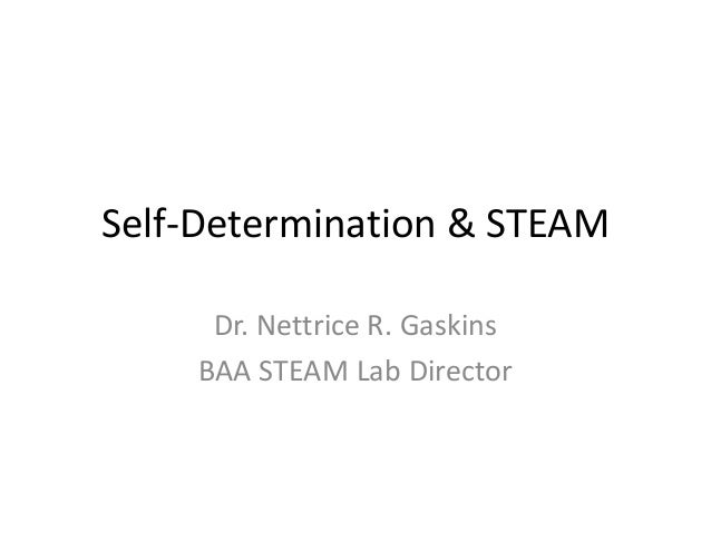 Self-Determination & STEAM Dr. Nettrice R. Gaskins BAA STEAM Lab Director