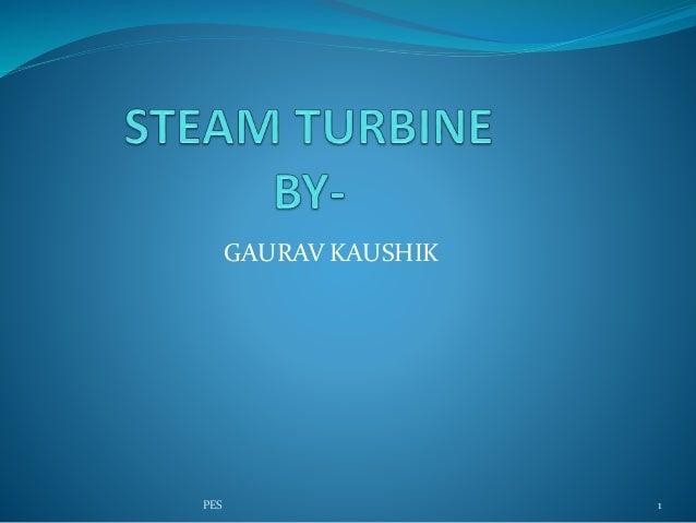 GAURAV KAUSHIK 1PES