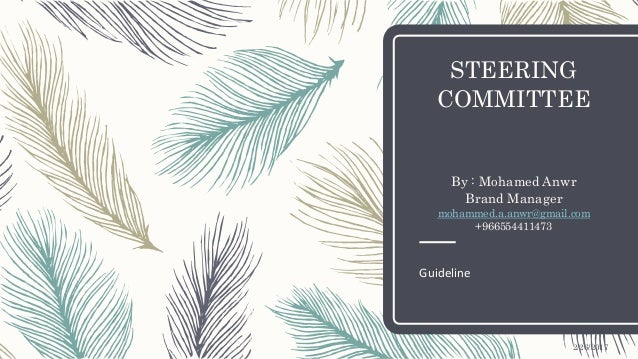 STEERING COMMITTEE By : Mohamed Anwr Brand Manager mohammed.a.anwr@gmail.com +966554411473 Guideline 2/26/2017