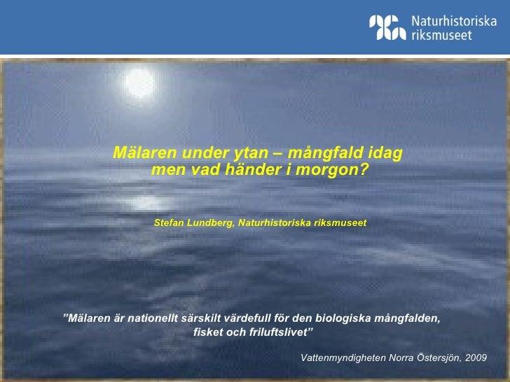 """Mälaren under ytan – mångfald idag  men vad händer i morgon? Stefan Lundberg, Naturhistoriska riksmuseet """" Mälaren är nati..."""