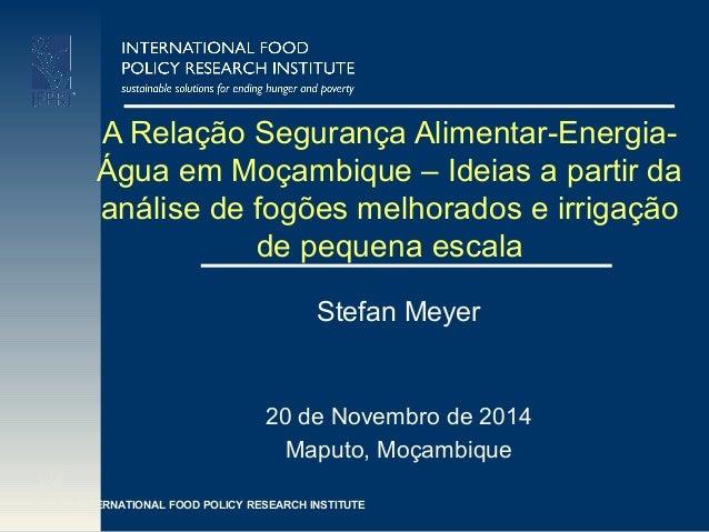 INTERNATIONAL FOOD POLICY RESEARCH INSTITUTE A Relação Segurança Alimentar-Energia- Água em Moçambique – Ideias a partir d...