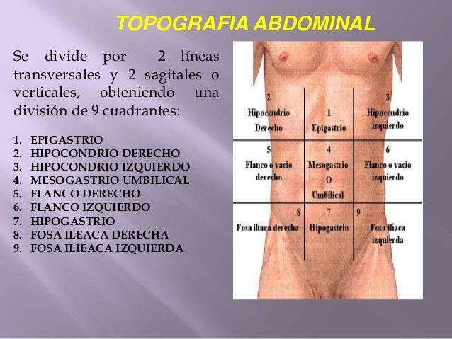 Topografia abdominal y peritoneo.