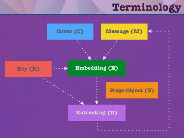 Terminology Embedding (E) Extracting (D) Cover (C) Message (M) Stego-Object (S) Key (K)