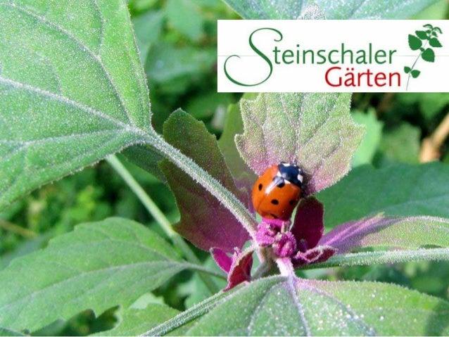 Treten Sie ein in eine wunderschöne Gartenwelt!