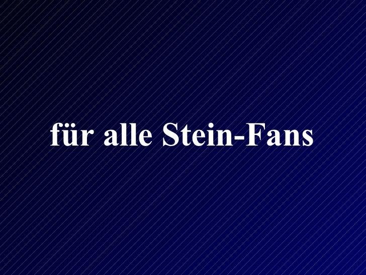 für alle Stein-Fans