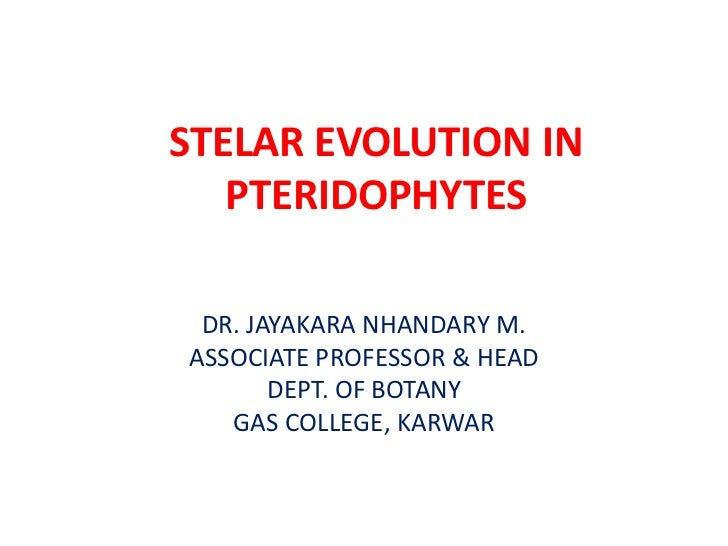 STELAR EVOLUTION IN   PTERIDOPHYTES DR. JAYAKARA NHANDARY M.ASSOCIATE PROFESSOR & HEAD       DEPT. OF BOTANY   GAS COLLEGE...