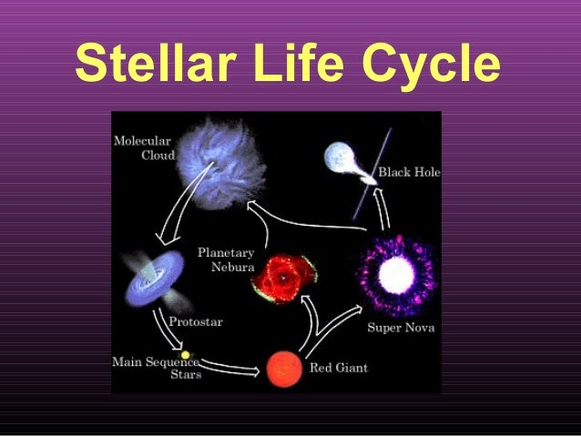Stellar Life Cycle Section 3 on Life Cycles Of Stars