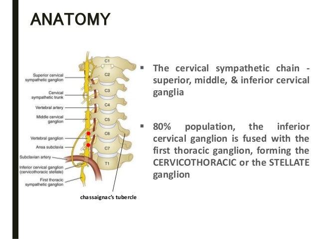 cervical ganglion