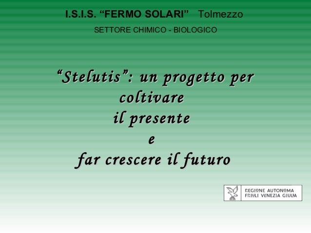 """I.S.I.S. """"FERMO SOLARI"""" Tolmezzo      SETTORE CHIMICO - BIOLOGICO"""" Stelutis"""": un progetto per          coltivare         i..."""