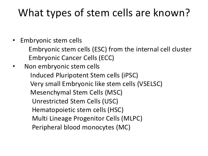 Therapeutic potential of nonembryonic autologus stem cells and the j – Stem Cell Worksheet