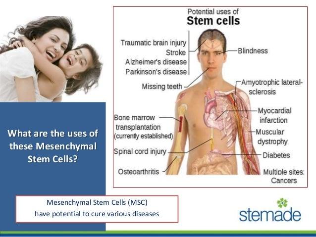 Dental Stem Cells Preservation Stemade Biotech