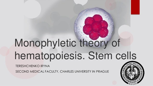 Monophyletic theory of hematopoiesis. Stem cells TERESHCHENKO IRYNA SECOND MEDICAL FACULTY, CHARLES UNIVERSITY IN PRAGUE