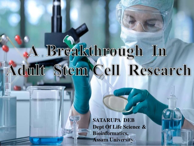 Stem Cell Research Speech Outline Research Paper Sample   Words  Stem Cell Research Speech Outline