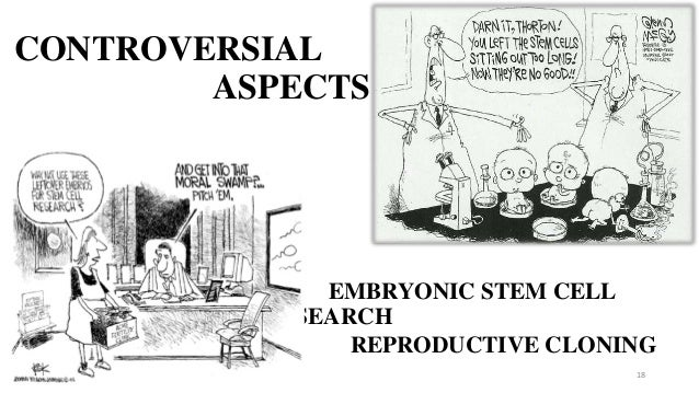 stem cell and cloning controversial aspects 18 • • embryonic stem cell research