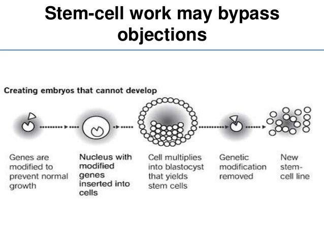Stem cell and its clinical implications