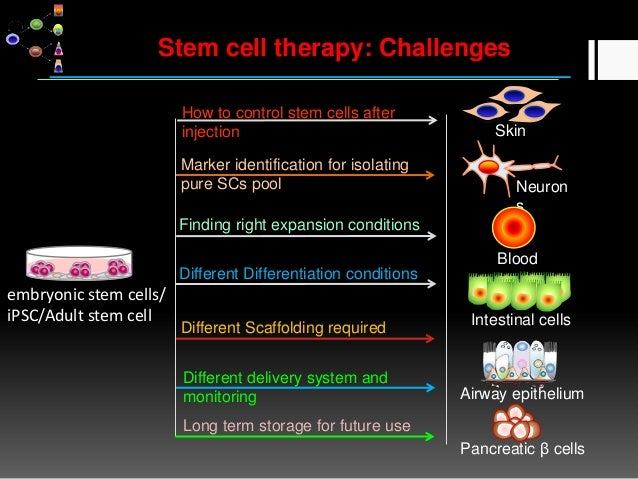 Stem cell and regenerative medicine