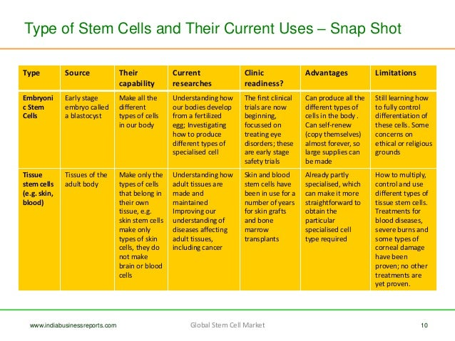 Global Stem Cell Market - Brief Overview