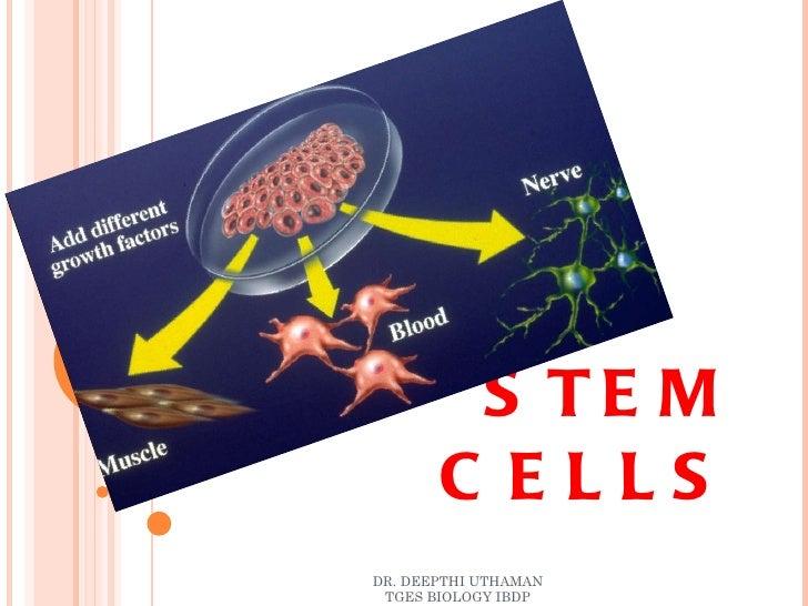 STEM CELLS DR. DEEPTHI UTHAMAN TGES BIOLOGY IBDP