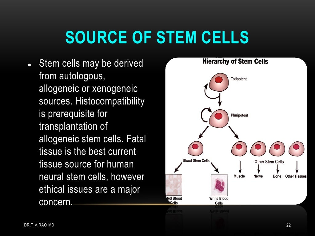 ethical issues brought forth by stem cell The ethical issue surrounding embryonic stem cells research arises because human embryos are destroyed in the process i believe that the stem cell research is a very controversial topic in today's society this topic brings up many ethical questions about it is right to do the research or not.