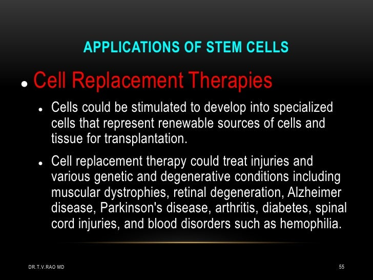 APPLICATIONS OF STEM CELLS    Cell Replacement Therapies           Cells could be stimulated to develop into specialized...