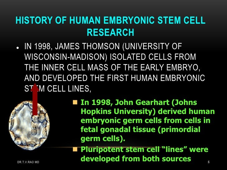 HISTORY OF HUMAN EMBRYONIC STEM CELL              RESEARCH   IN 1998, JAMES THOMSON (UNIVERSITY OF    WISCONSIN-MADISON) ...
