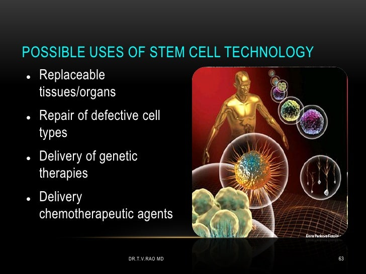 POSSIBLE USES OF STEM CELL TECHNOLOGY   Replaceable    tissues/organs   Repair of defective cell    types   Delivery of...