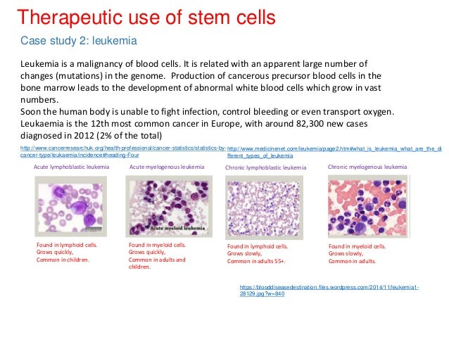 stem cell research case studies