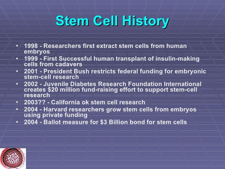 embryonic stem cell research history Embryonic-stem-cell research has provoked more controversy political, religious, and ethical than almost any other area of scientific inquiry.