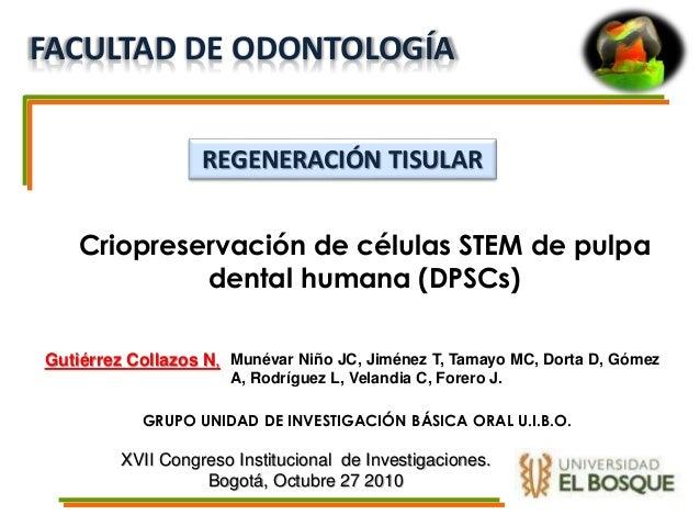 Criopreservación de células STEM de pulpa dental humana (DPSCs) GRUPO UNIDAD DE INVESTIGACIÓN BÁSICA ORAL U.I.B.O. Munévar...