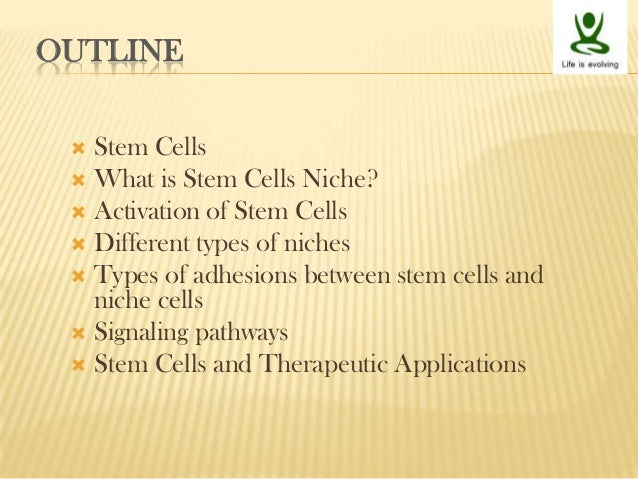 types of cells essay