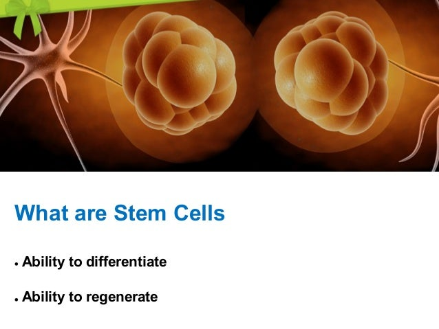 Stem Cell is a •young, •primitive and unspecialized cell with a remarkable potential to renew, •Differentiate and Develop ...