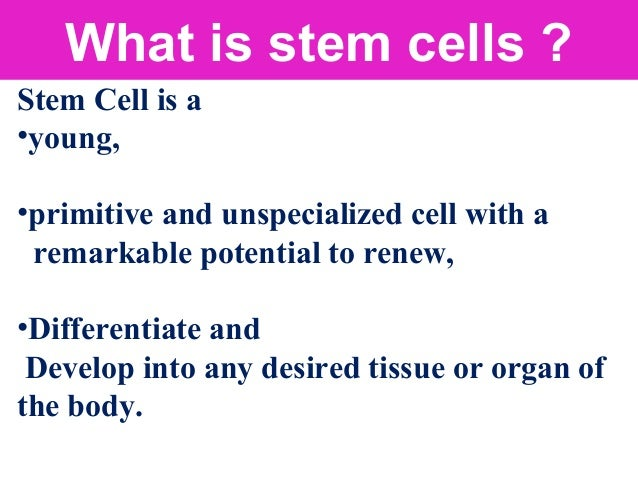 Self renewal: Unlimited proliferative potential. Differentiation: Differentiate into various cell types Pluripotency, Mult...