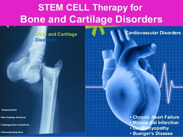 KIDNEY LIVER STEM CELL THERAPY FOR KIDNEY /LIVER DISORDER